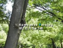箱田六丁目P1のコピー